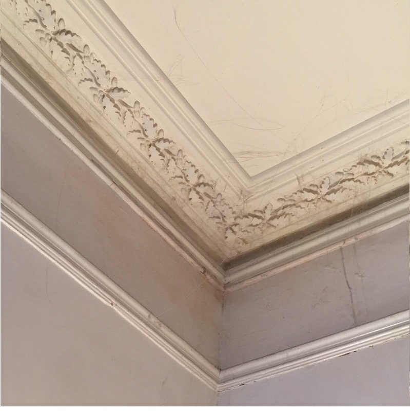 Period Victorian Plaster Mouldings Coving Shop Ltd